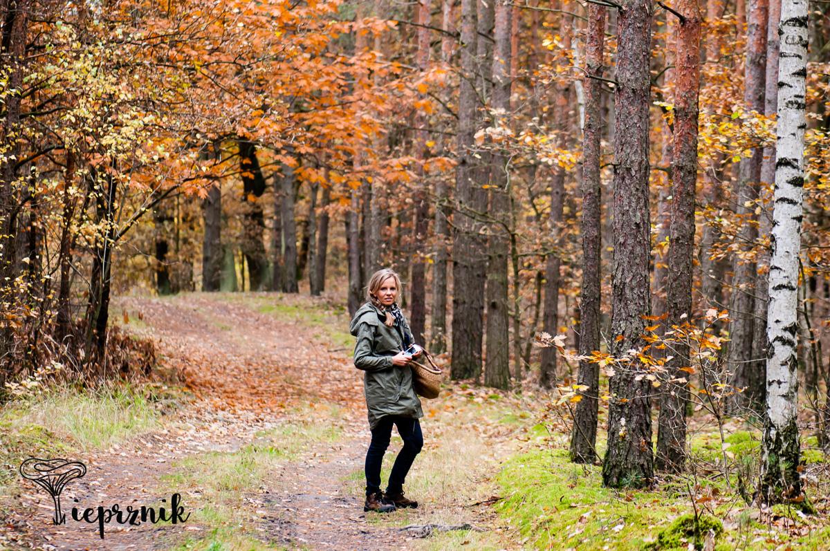 Październik w Borach Dolnośląskich