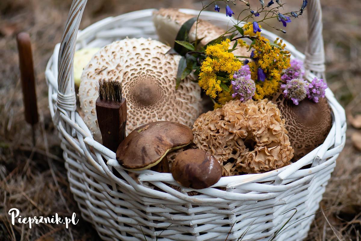 szczyt sezonu grzybowego